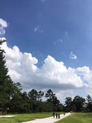 上賀茂神社3.jpeg