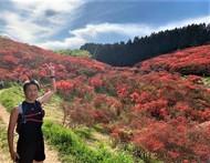 金剛山6.jpg